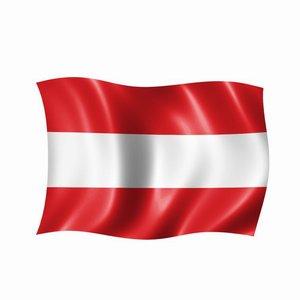 Налогообложение членских взносов в пользу резидента Австрии